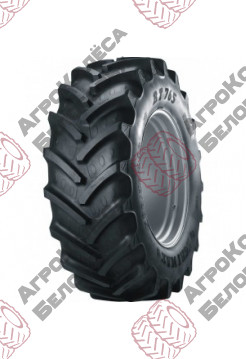 Tire 710/70R38 166A8/166B AGRIMAX RT-765 BKT